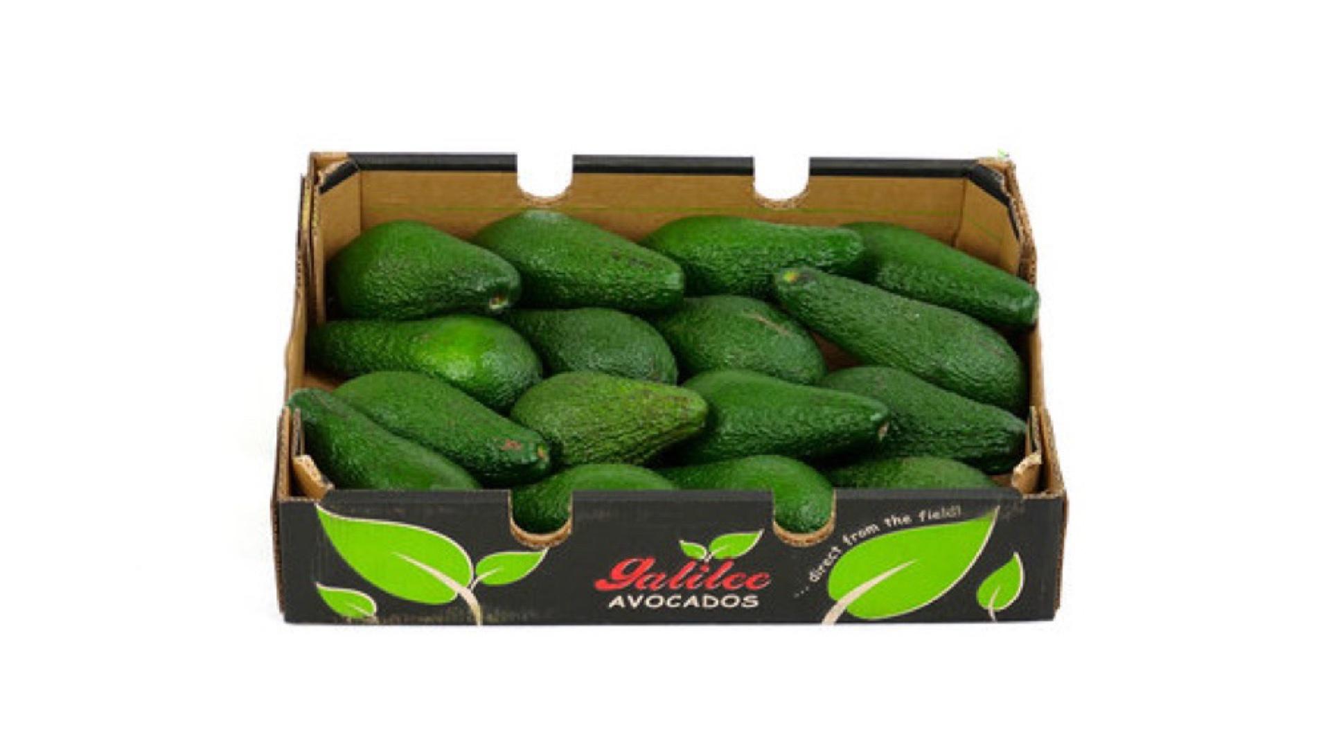 Avocados - Kiste (16 Stück)